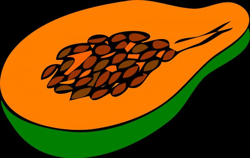 木瓜生吃能不能丰胸木瓜的功效与作用